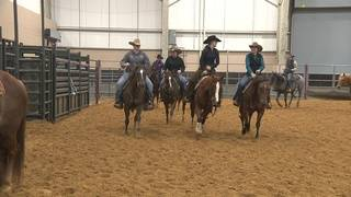 Riders compete to showcase cutting horses' agility, skill at San Antonio…