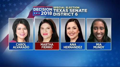 4 candidates vying for Texas Senate District 6 seat