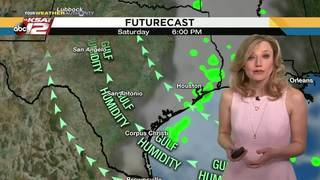 Sarah's weather webcast