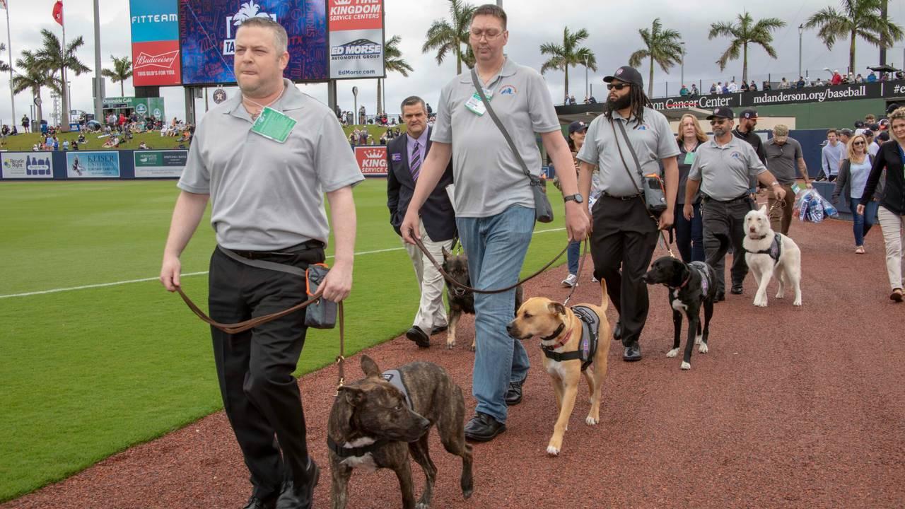 justin verlander dogs 3_1553201929575.jpg.jpg