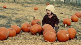 It's Fall Y'all: Where to find pumpkin patches in San Antonio