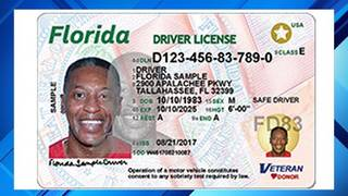 Getting A Florida Drivers License >> Florida Driver S Licenses To Get Complete Makeover