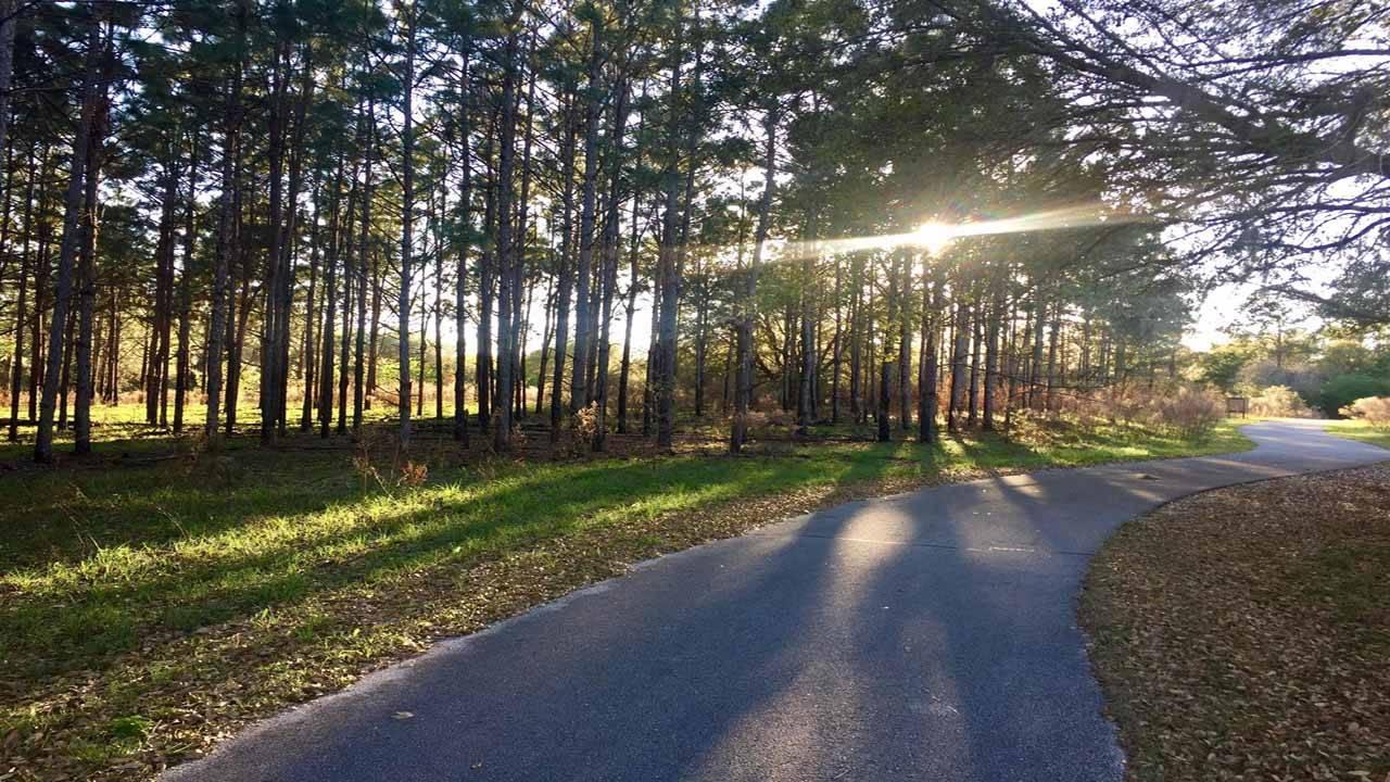 Gainesville-Hawthorne State Park Trail