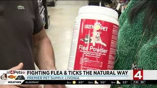 Fighting fleas and ticks the natural way