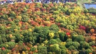 VIDEO: Stunningly beautiful fall foliage in southeastern Michigan