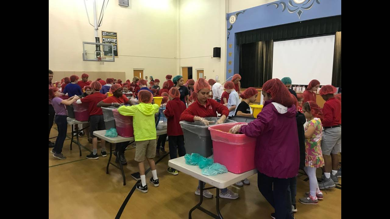 Park Maitland School meals