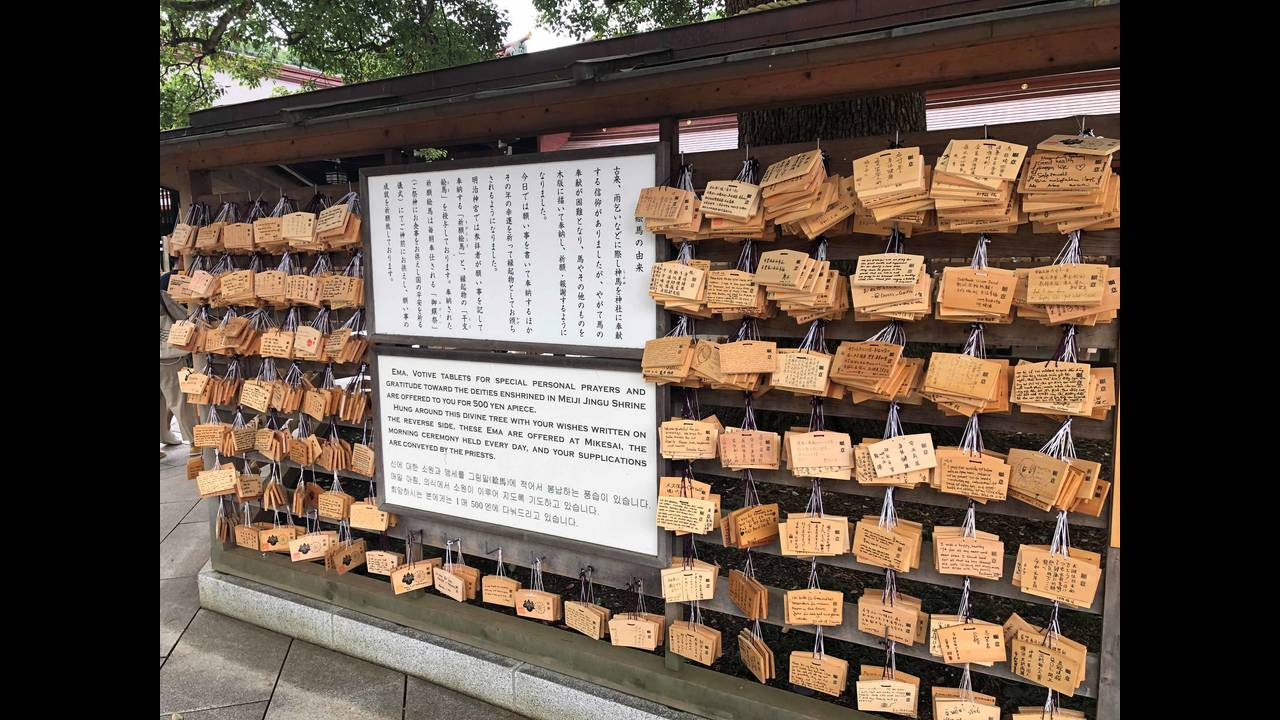 Meiji Jingu Shrine 3_1563847075874.jpg.jpg