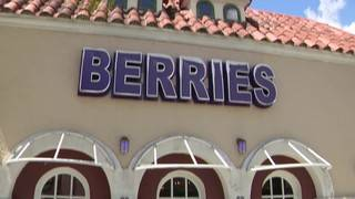 No dogs allowed! Pet dogs inside South Florida restaurant among 53 violations