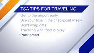 Daytime Dish: Holiday Travel Tips, Travel Forecast