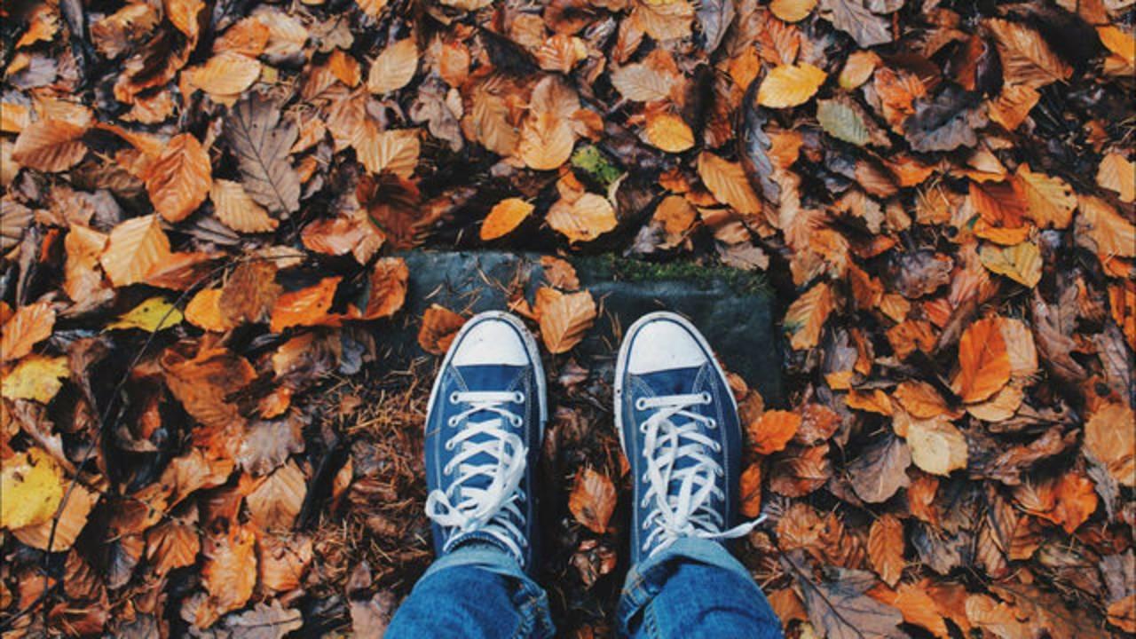 Feet in Fall Leaves