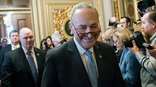 Schumer: Deal reached to reopen government