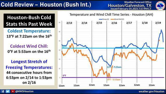 NWS Cold Review