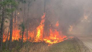Flagler County's burn ban to expire Monday