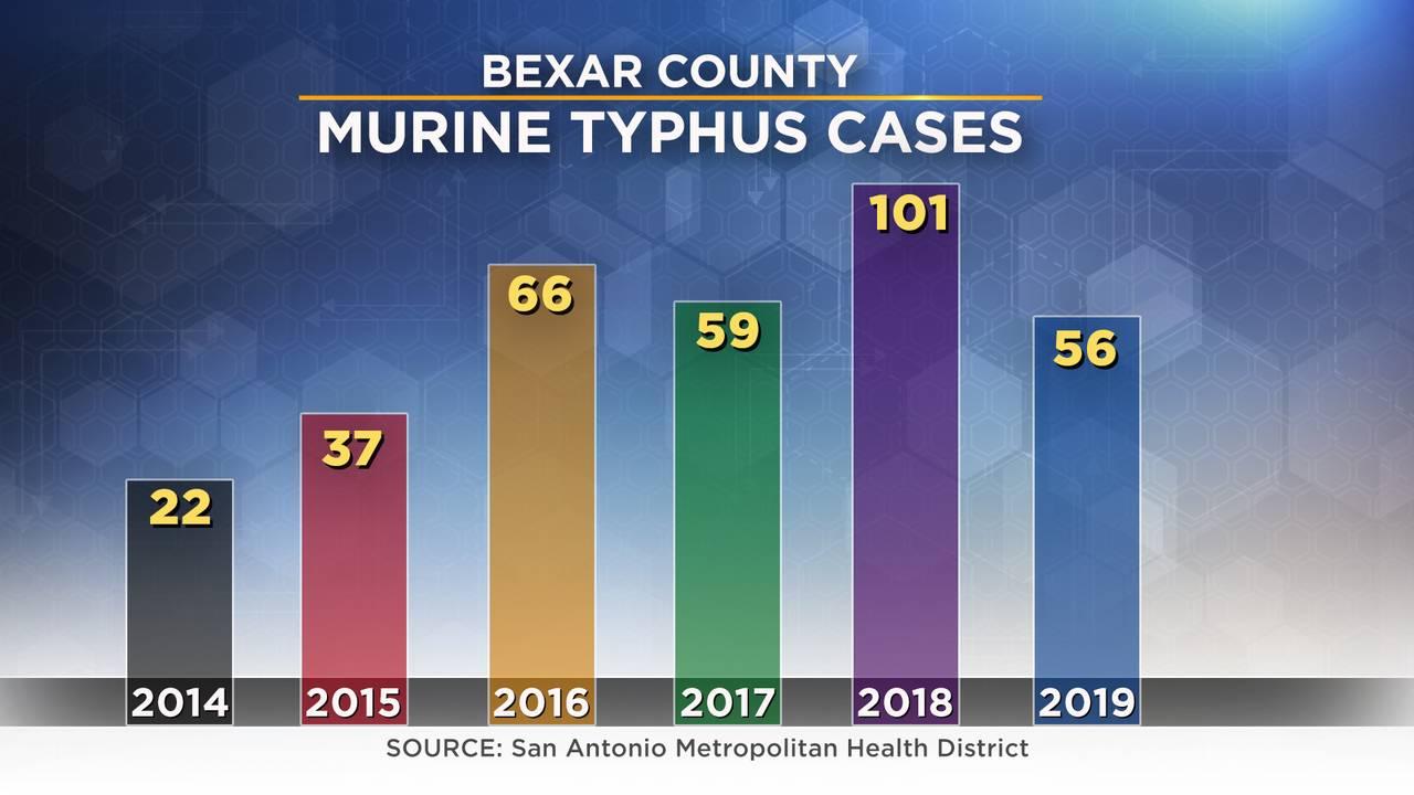 Murine Typhus Cases Bar Graph_1564446020974.jpg.jpg