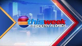 This Week in South Florida: Nov. 19