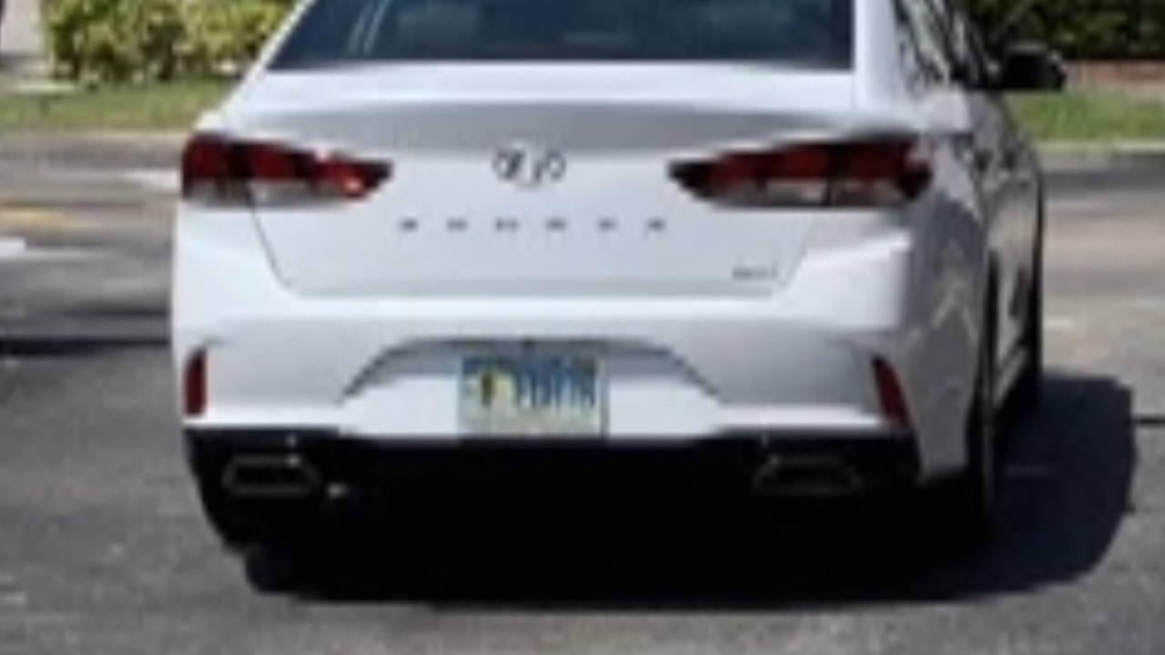 white Hyundai Sonata that struck David Miller