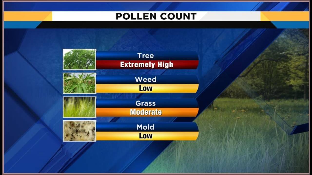 pollen count_1553094408104.JPG.jpg