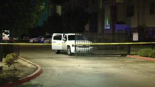 Carjacking victim shoots, kills thief at apartment complex in southeast Houston