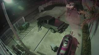 Man caught on camera stealing personal watercraft from Hollywood business