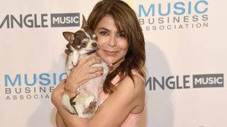 Celebrities and their dogs