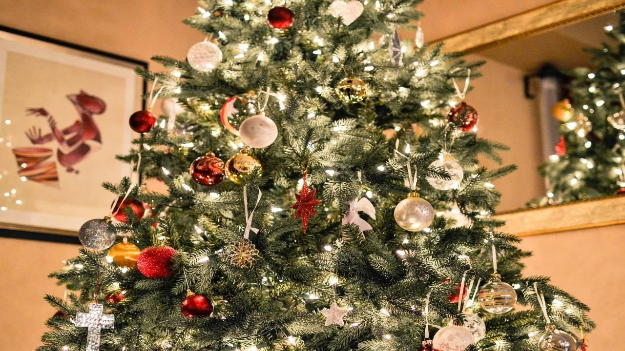 christmas-tree-1081981_1920_1544994061307.jpg