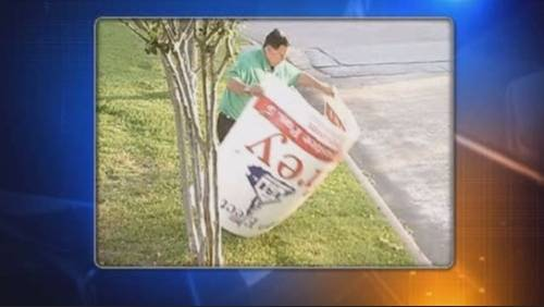 Local politician accused of stealing campaign signs