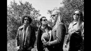 Alice In Chains Live at Hard Rock