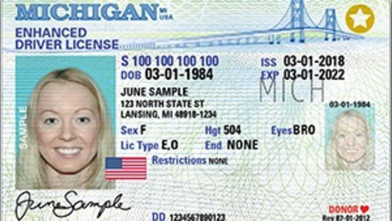 Enhancd Driver's License Michigan (1)_1570551957573.jpg.jpg