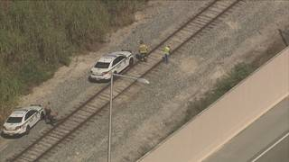 Pedestrian survives being struck by train in Kendall, authorities say