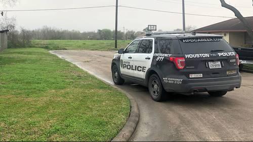 Man walking dog finds woman's beaten body in southeast Houston field