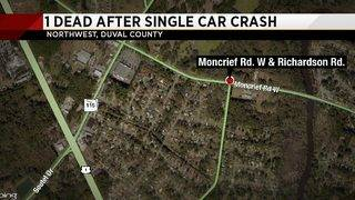 Man killed when he drives car into tree on Moncrief