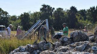Brevard Zoo works with citizens to restore oyster reefs crucial to&hellip&#x3b;