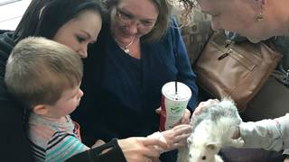 Mill Mountain Zoo animals visits patients at Carilion Children's hospital