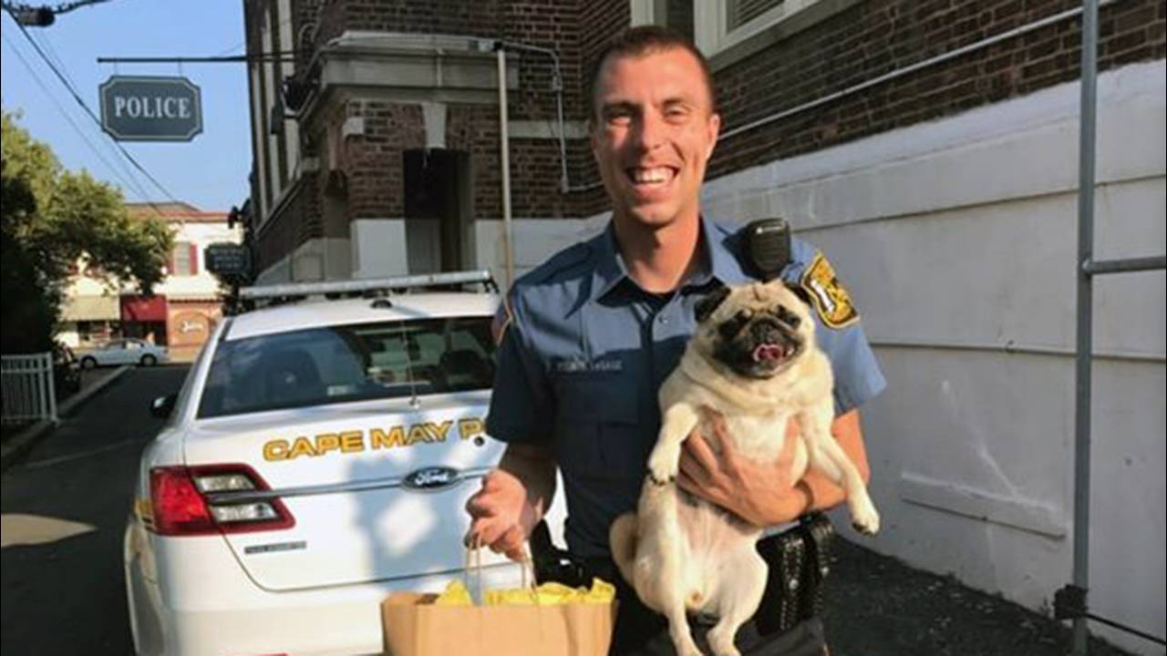 dog and cop with cookies_1531843704982.jpg.jpg18486366