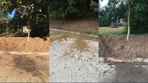 Stinky mystery: Human waste being dumped in Oak Forest neighborhood