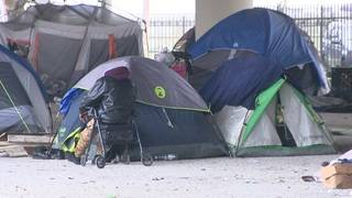 Organizations survey homeless population in Houston