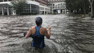 The Flood and Fury of Hurricane Irma