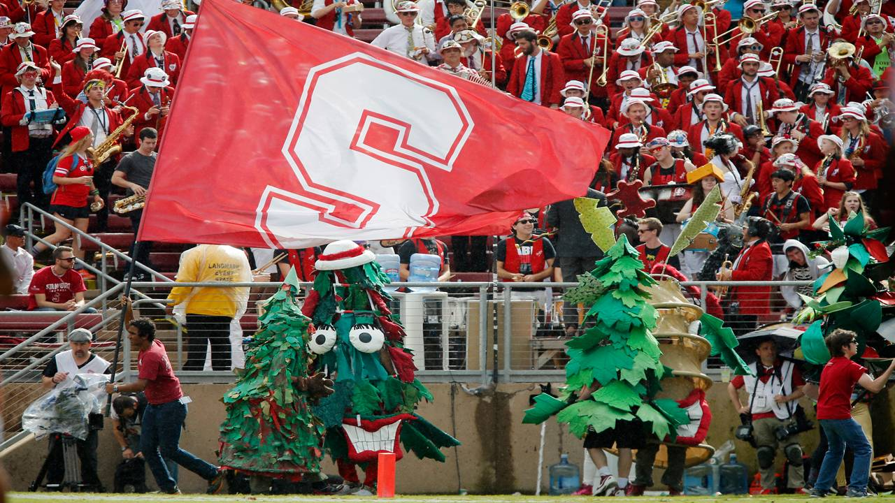Stanford Tree, Stanford Cardinal mascot, at game in 2014
