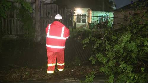 Strong storms knock down trees, leave thousands without power