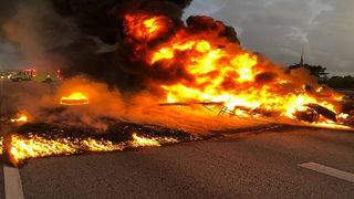 Box truck fire brings traffic to standstill on Florida's Turnpike at&hellip&#x3b;