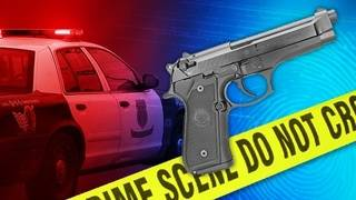 Victim shot in leg during armed carjacking in Miami