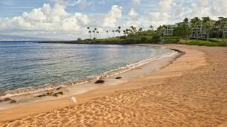 Dr. Beach's top US beaches for 2018
