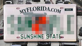 Oh my! Rejected Florida vanity license plates are downright