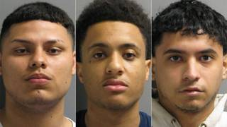 Robbery call at drug house leads to 3 arrests, deputies say