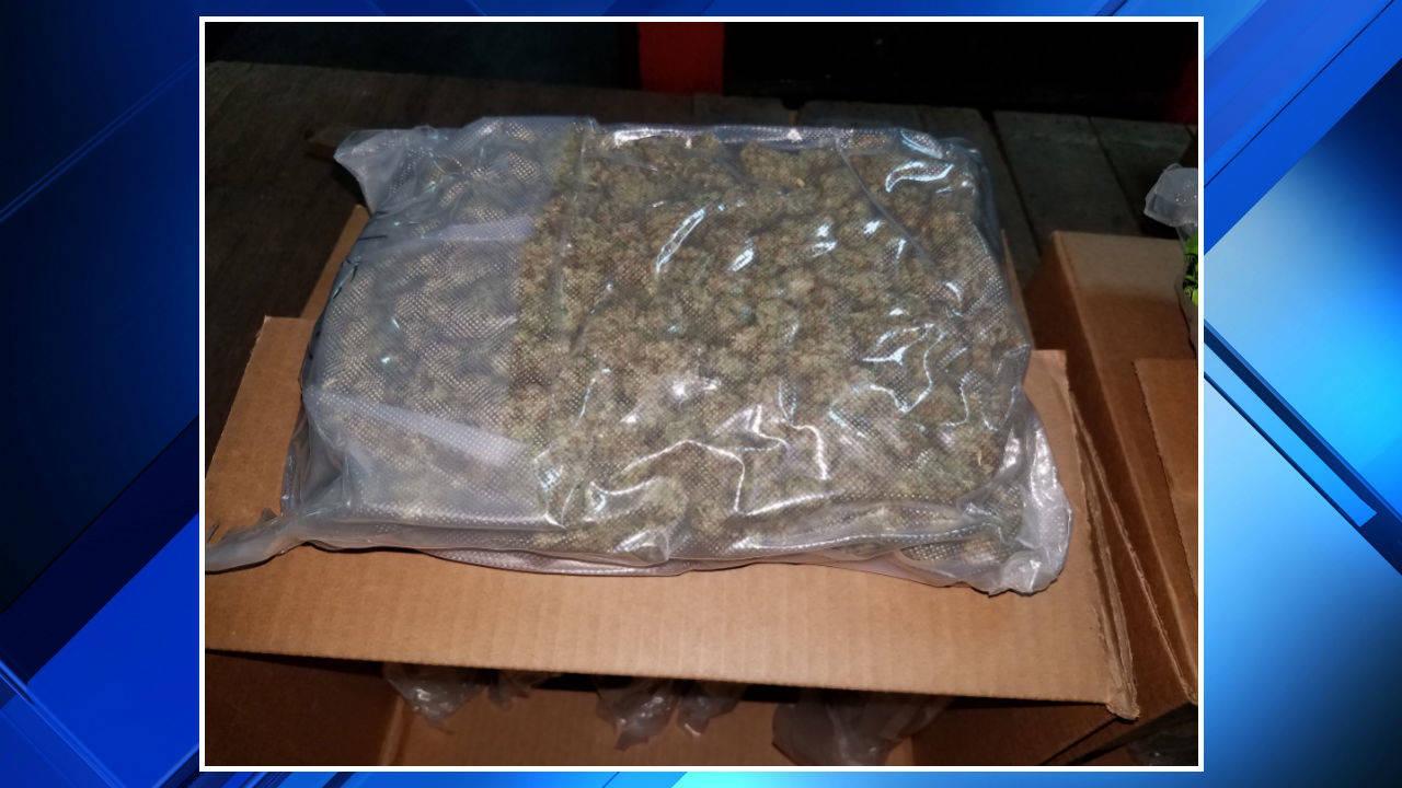80 pounds of marijuana seized at Blue Water Bridge 1