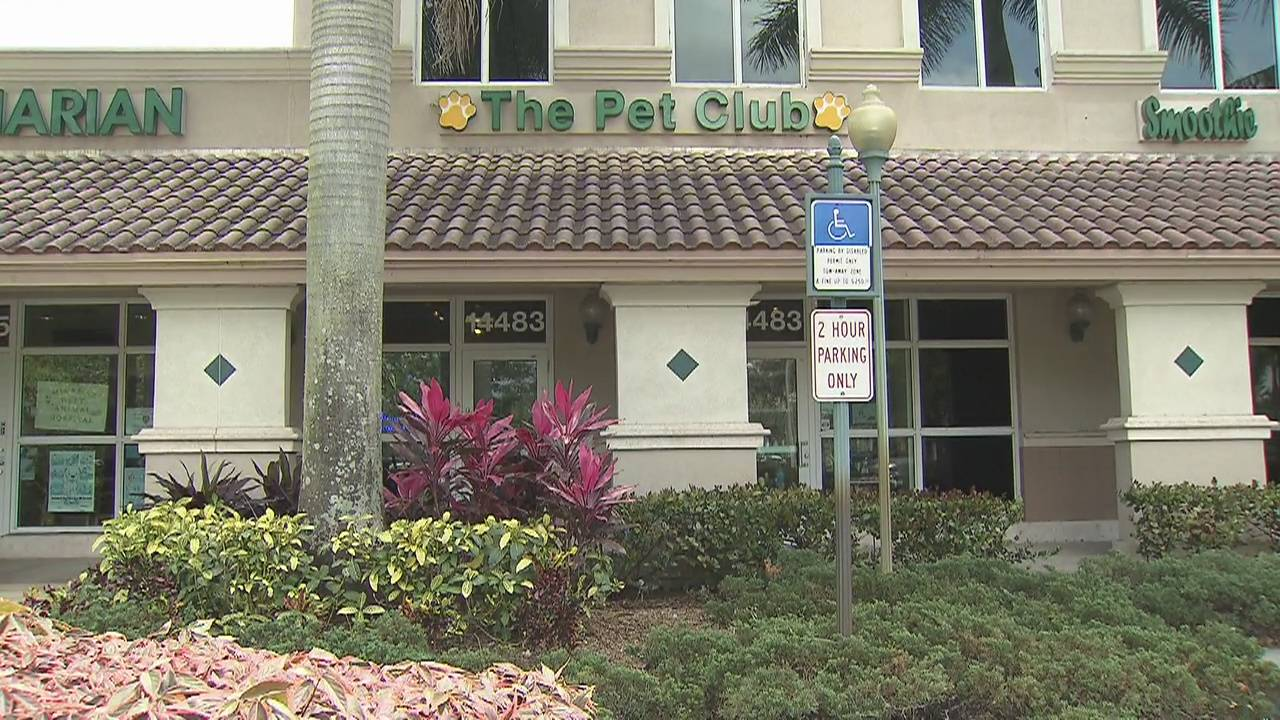 The Pet Club groomer where Danielle Trentin's 3 dogs died