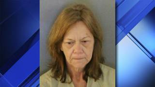 Florida woman kills injured dog instead of taking it to vet