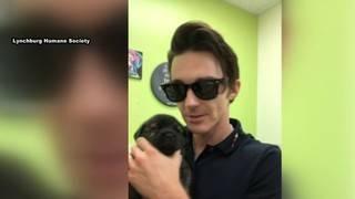 Drake Bell makes a stop at the Lynchburg Humane Society