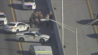 Man stunned with Taser after running on Palmetto Expressway, police say