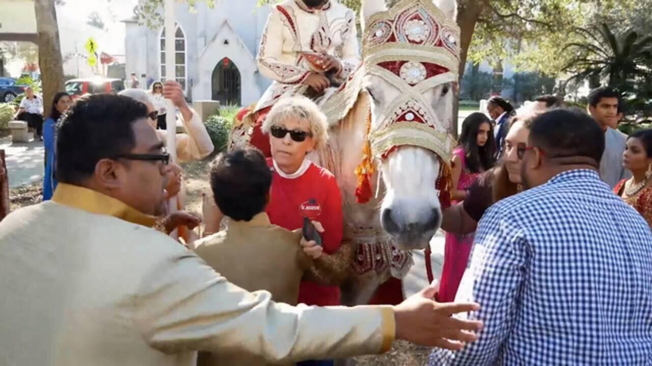 Wanda blocking horse 2_1519755890220.jpg.jpg
